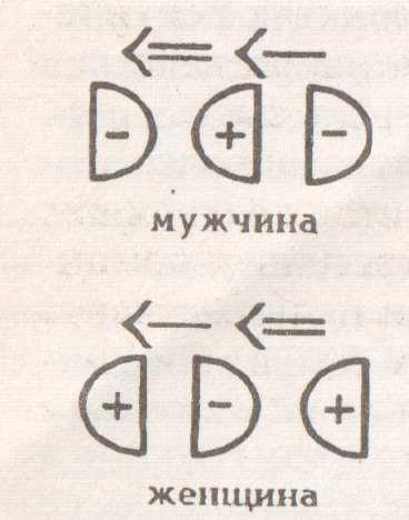 (368x468, 15Kb)