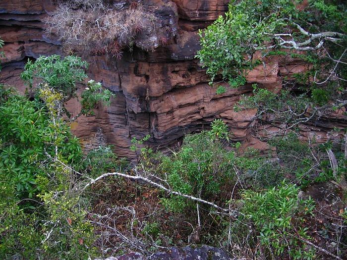 каньон Реки Блайд (Blyde River Canyon) 50765