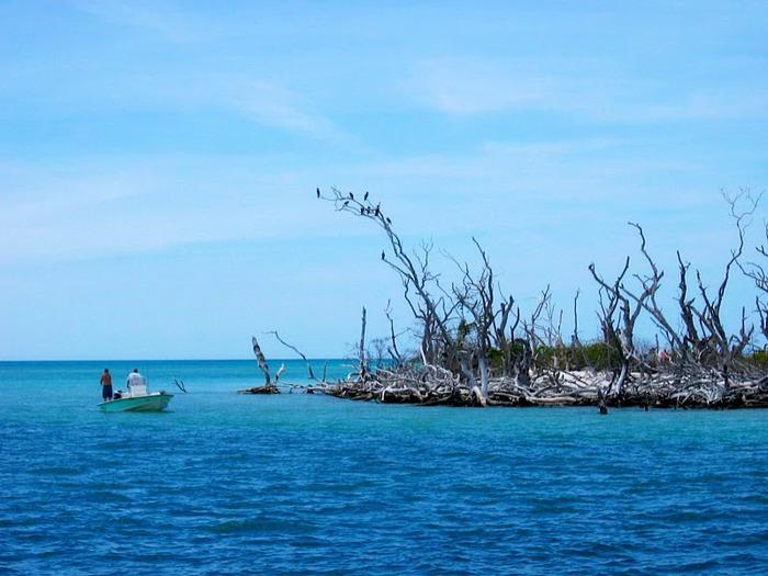Остров Санибел 21433