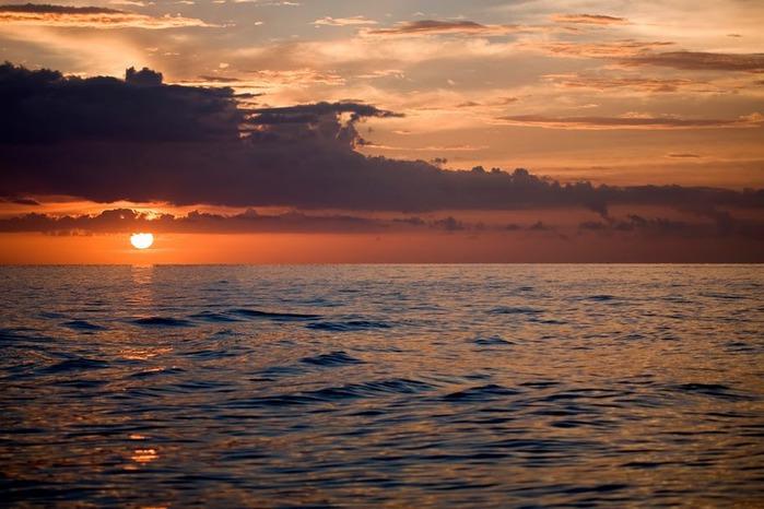 Остров Санибел 92196