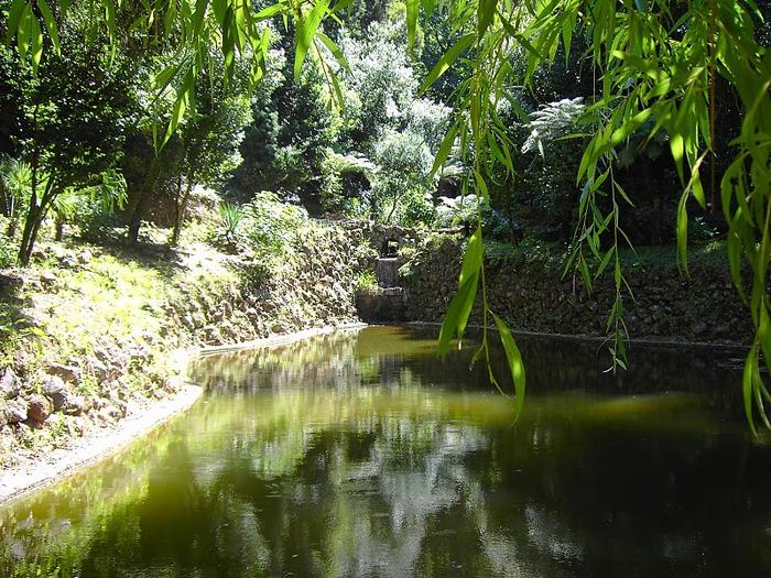Дворец удовольствий в окружении леса Буссакo 67505