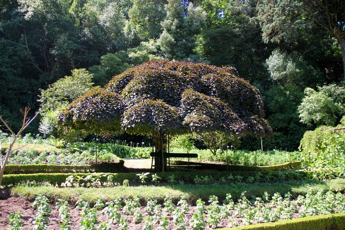 Дворец удовольствий в окружении леса Буссакo 46584