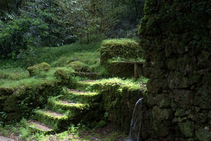 Дворец удовольствий в окружении леса Буссакo 67739
