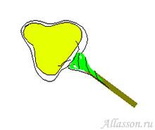 5. Вид готового цветка