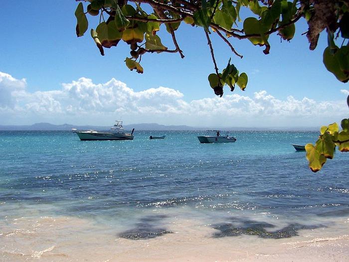 Доминикана - тропический рай. 81653
