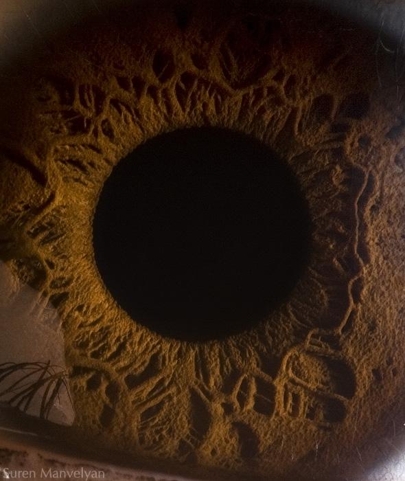 глаза макросъемка