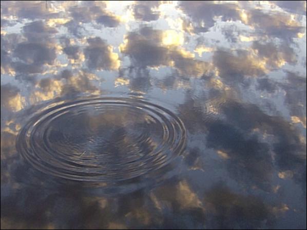 круги на воде