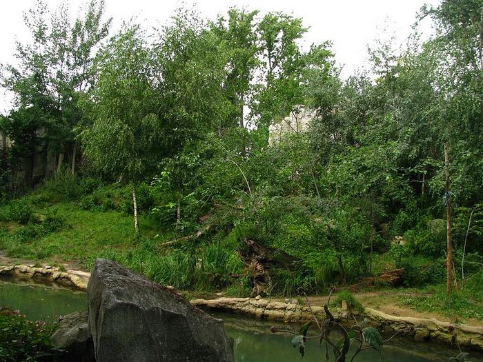 Зоологический сад в Лейпциге (Zoologischer Garten, Leipzig ) 88070