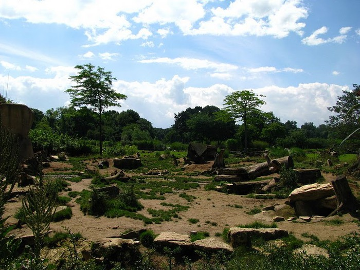 Зоологический сад в Лейпциге (Zoologischer Garten, Leipzig ) 48768