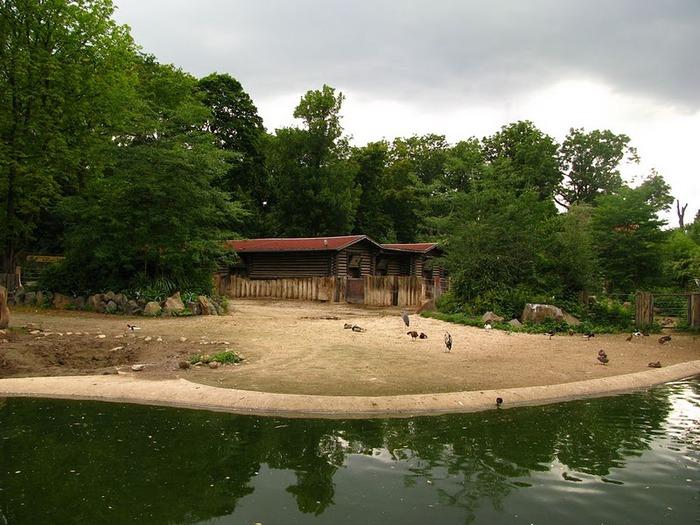 Зоологический сад в Лейпциге (Zoologischer Garten, Leipzig ) 89578
