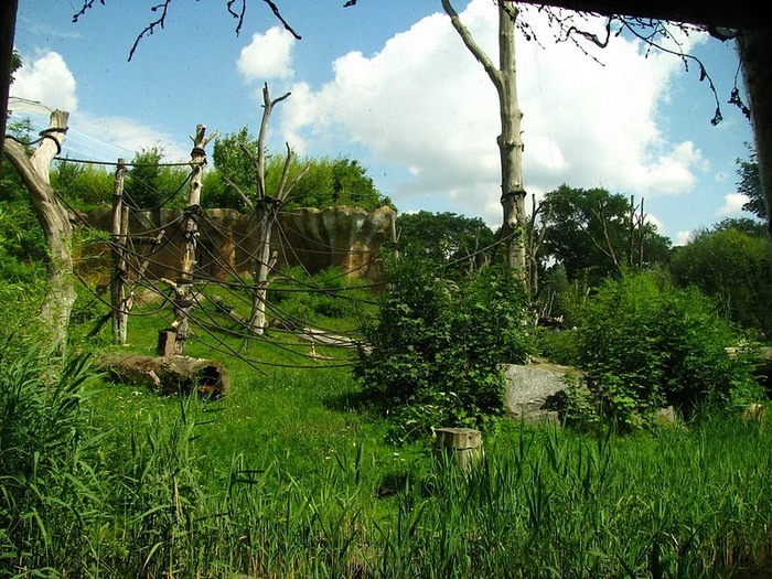 Зоологический сад в Лейпциге (Zoologischer Garten, Leipzig ) 56028