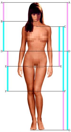 http://img0.liveinternet.ru/images/attach/c/1//62/45/62045889_perfectwoman.jpg