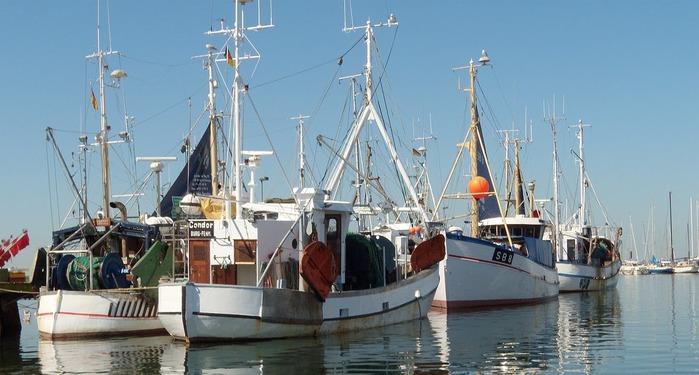 Остров Фемарн – бальзам для души 86075