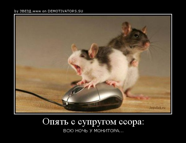 http://img0.liveinternet.ru/images/attach/c/1//62/480/62480372_1281287563_0_317eb_438c7e6f_orig.jpg