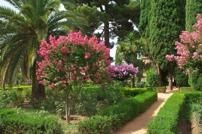 Альгамбра - жемчужина Андалузии 50995