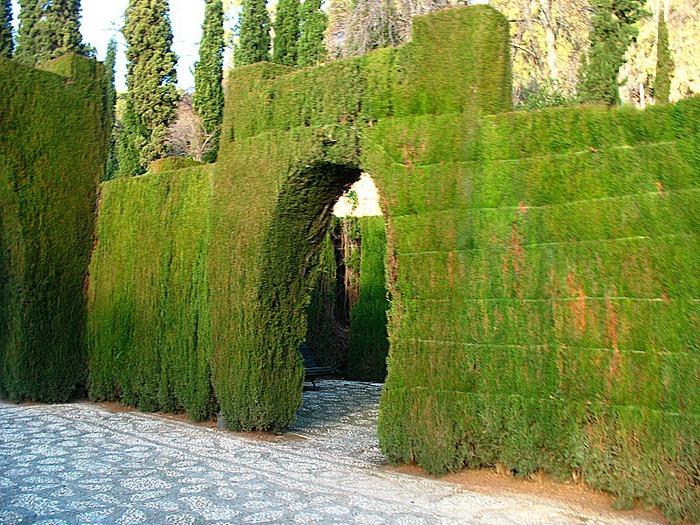 Альгамбра - жемчужина Андалузии 60570
