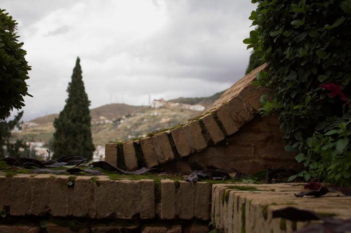 Альгамбра - жемчужина Андалузии 25054