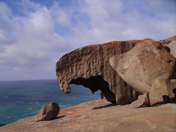Остров Кенгуру 12484