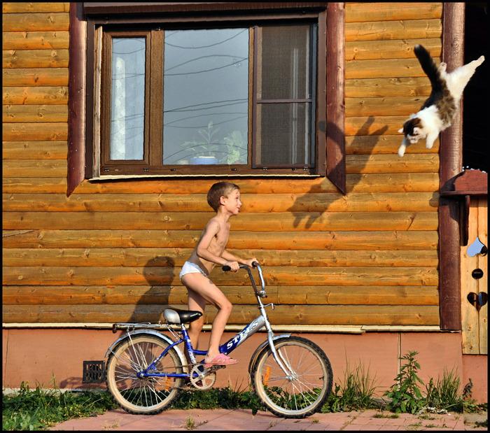 кот прыгает на мальчика на велосипеде