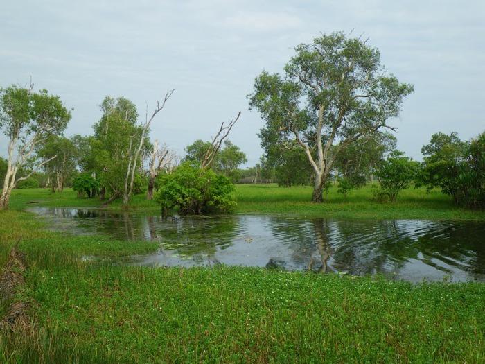 Национальный парк Какаду (Австралия) 30849