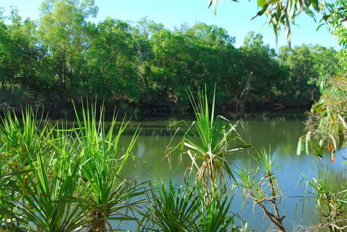 Национальный парк Какаду (Австралия) 93172