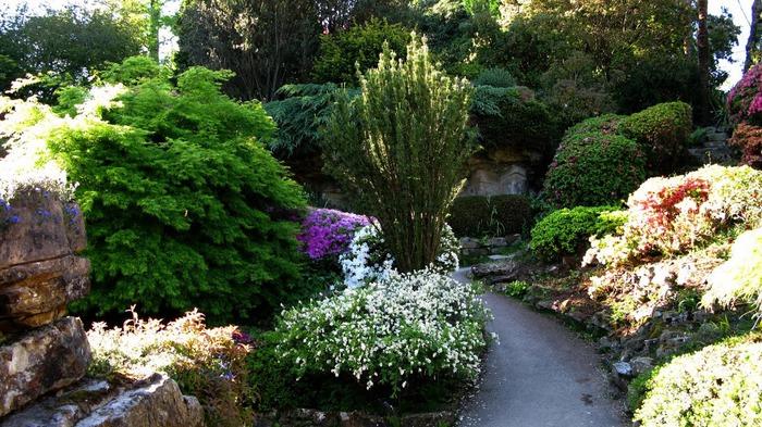 Сад Леонардсли - Leonardslee gardens 46552