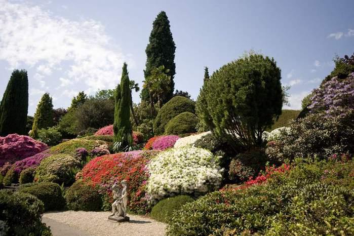Сад Леонардсли - Leonardslee gardens 89455
