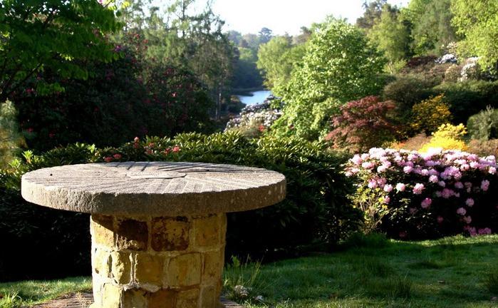 Сад Леонардсли - Leonardslee gardens 78256