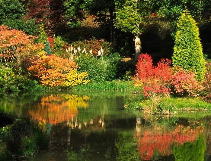 Сад Леонардсли - Leonardslee gardens 71336