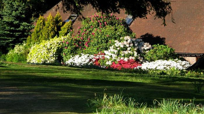 Сад Леонардсли - Leonardslee gardens 77136