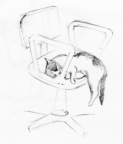 спящий котэ, зарисовка
