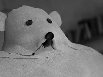 медведь счастья премьер-министр латвии