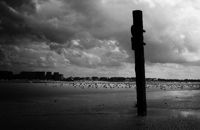 Фотограф Piet Flour 3