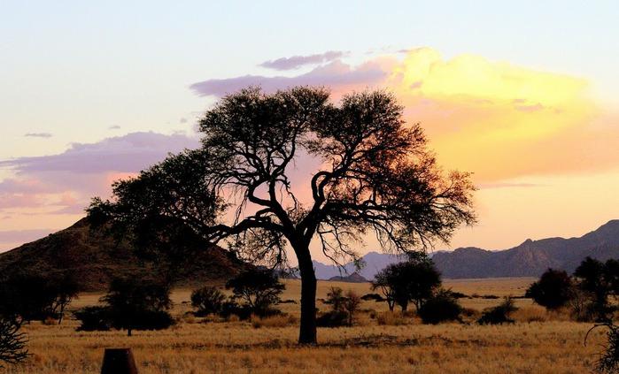 Намибия - страна двух пустынь 59456