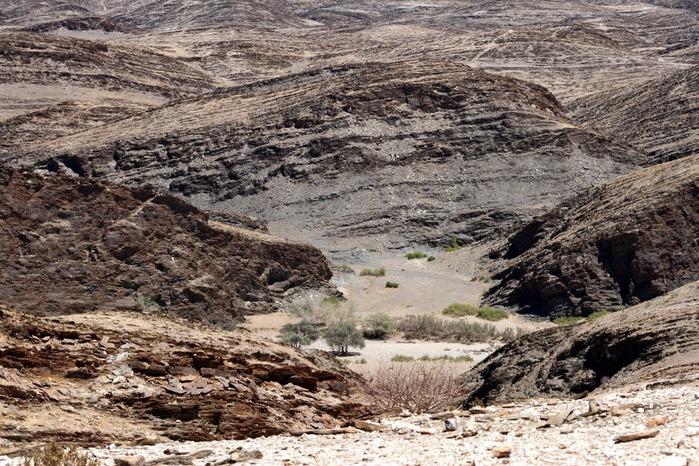 Намибия - страна двух пустынь 60975