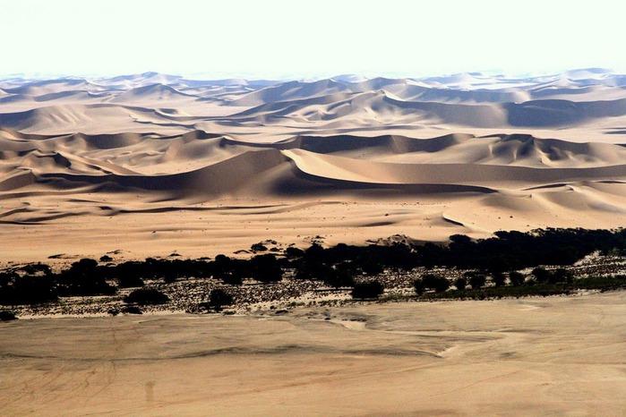 Намибия - страна двух пустынь 77932