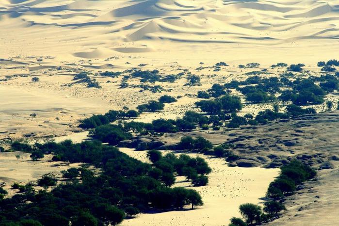 Намибия - страна двух пустынь 46755
