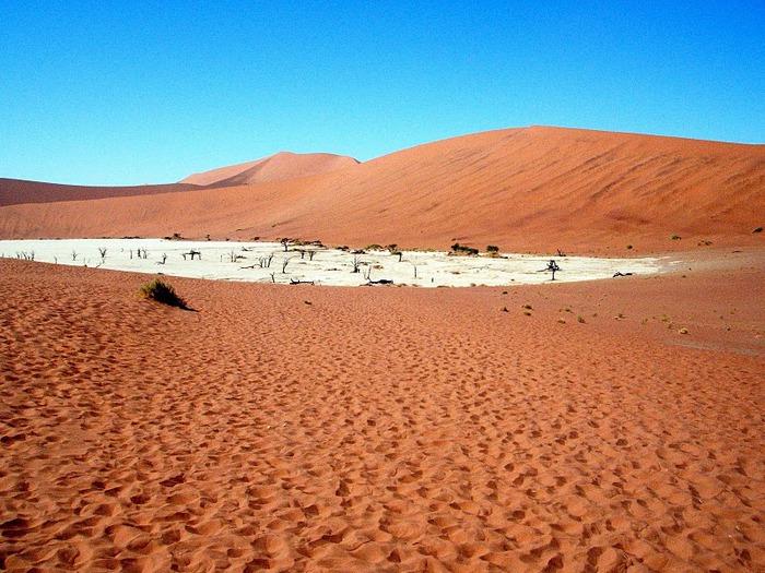 Намибия - страна двух пустынь 77868