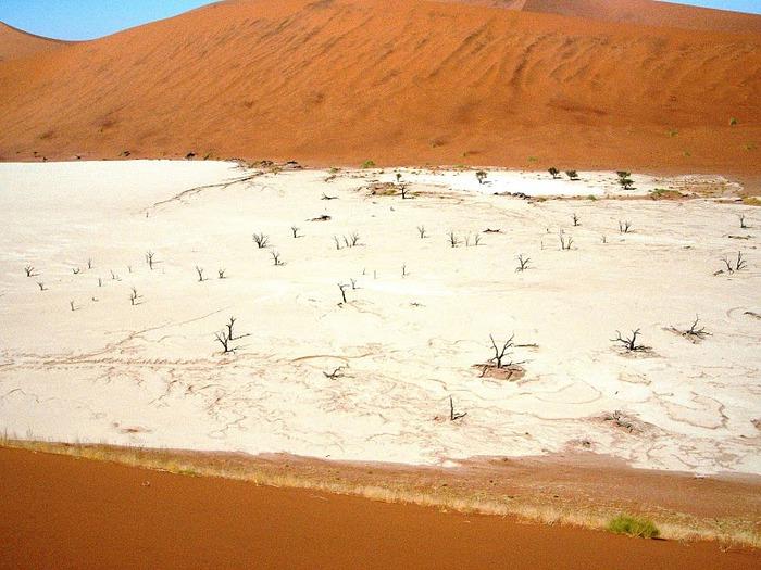 Намибия - страна двух пустынь 80667