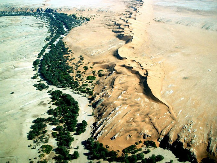 Намибия - страна двух пустынь 39197