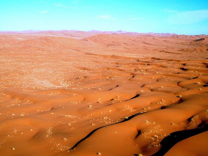 Намибия - страна двух пустынь 16886