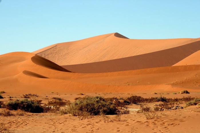 Намибия - страна двух пустынь 53875