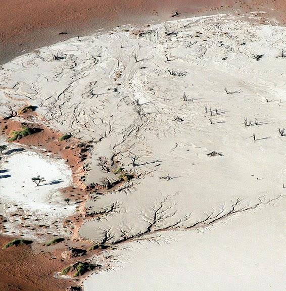 Намибия - страна двух пустынь 38518