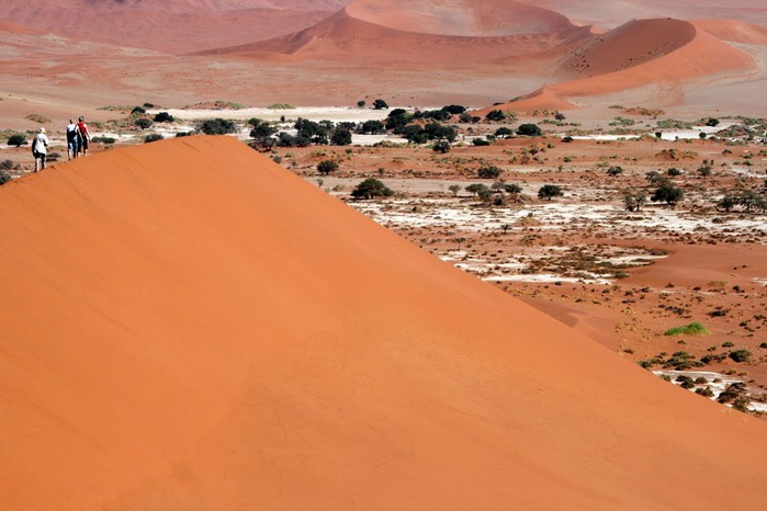 Намибия - страна двух пустынь 77247