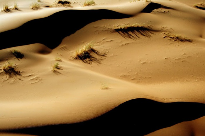 Намибия - страна двух пустынь 12474