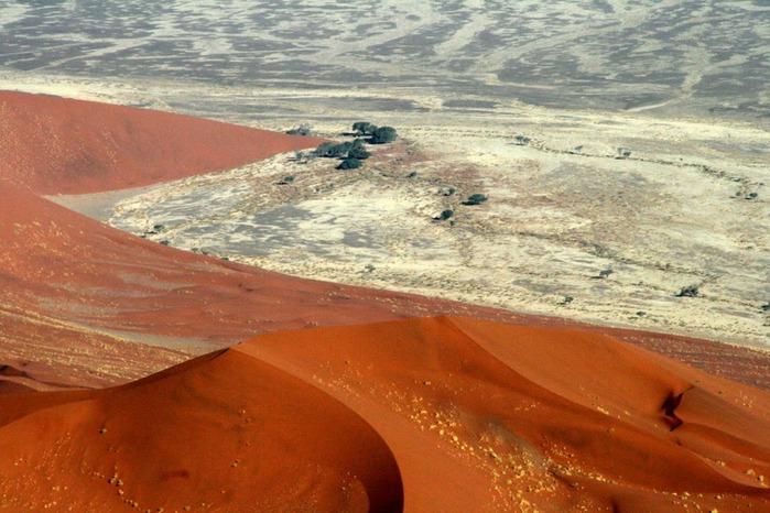 Намибия - страна двух пустынь 45456