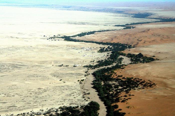 Намибия - страна двух пустынь 56492