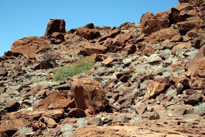 Намибия - страна двух пустынь 10321