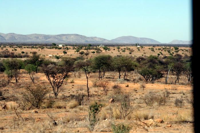Намибия - страна двух пустынь 26135