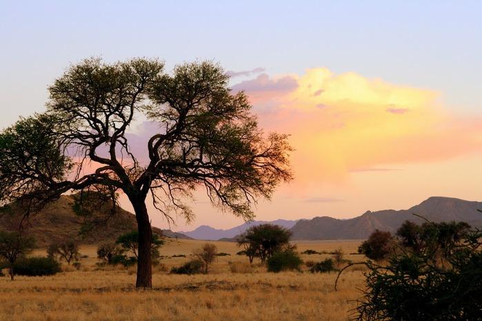 Намибия - страна двух пустынь 73955